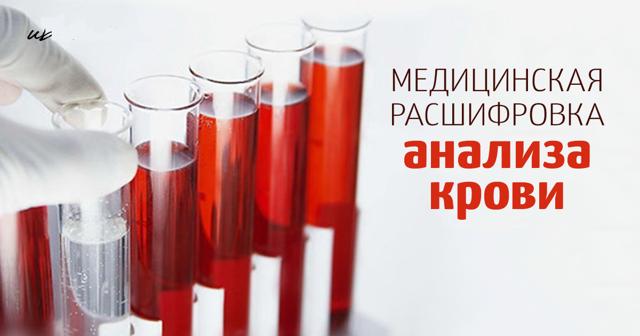Общий анализ крови: нормы, расшифровка анализа крови, подготовка к анализу крови