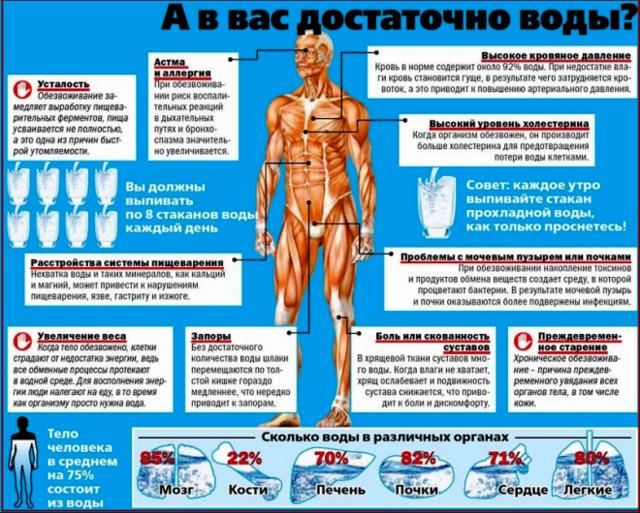 Как вылечить обезвоживание организма: способы восстановления организма после обезвоживания