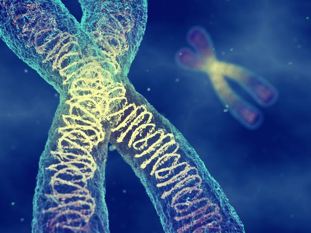 Профилактика рака: факторы риска, виды профилактики онкологии