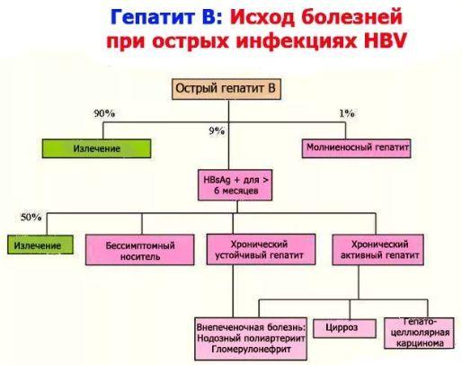 Вирусный гепатит b: лечение, как передается, симптомы гепатита b, анализ на гепатит